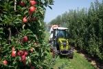CLAAS: На рынок выведен узкоколейный трактор NEXOS